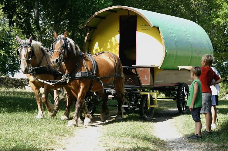 Vacances en roulotte itinérante avec chevaux et meneur