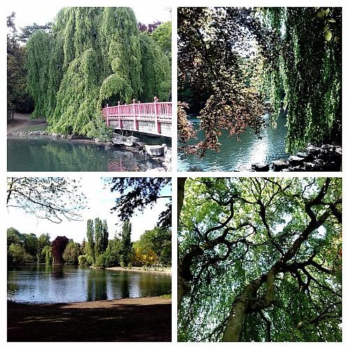 Parc Edmond de Rotschild