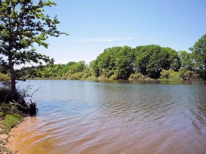 Circuit VTT Haute Serre et l'étang de Pinaud
