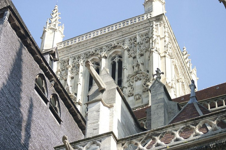Saint Etienne cathedral basilica
