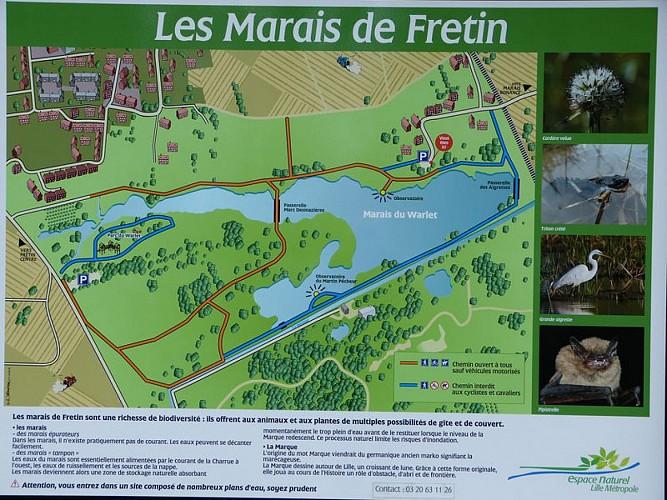 Les marais de Fretin
