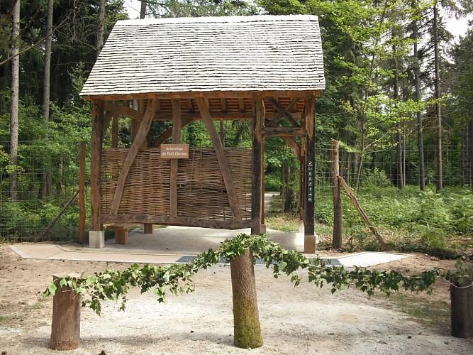 Arboretum du petit charme