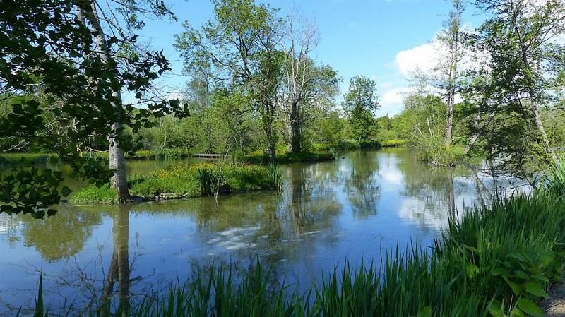 moncoutant-domaine-de-la-sabliere-aire-de-camping-car-riviere