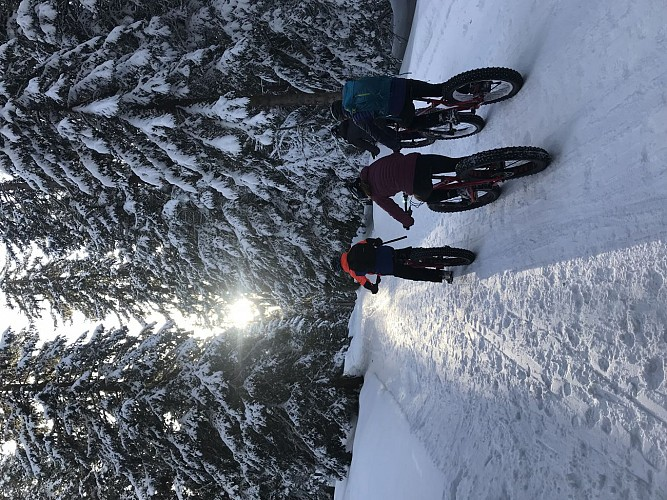Fat Bike Party