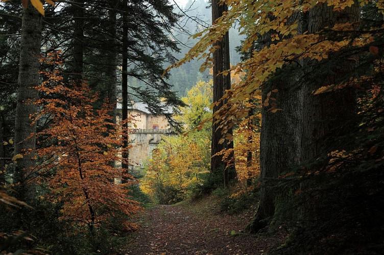Château de Roquedols et arboretum