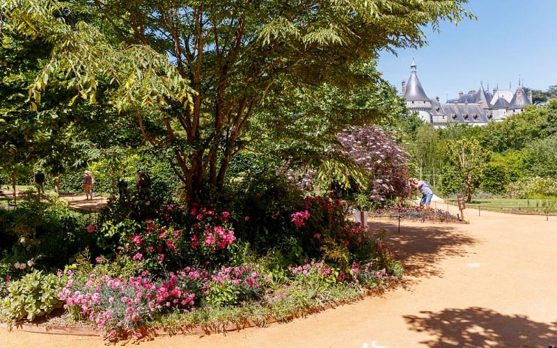 Chaumont-sur-Loire Domain Skip the Line Ticket