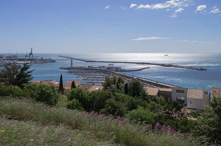 Sète (port)