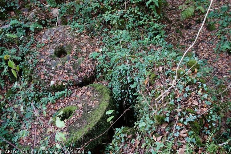 Ruines du moulin