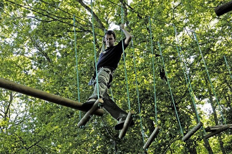 Een avontuur in de bomen