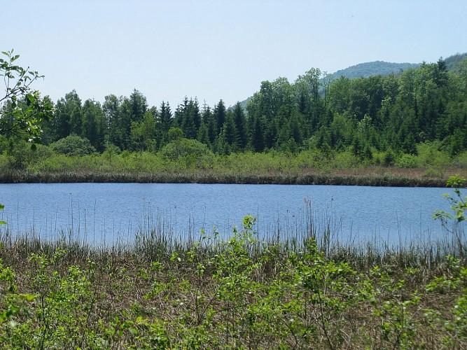 Lac d'Onoz
