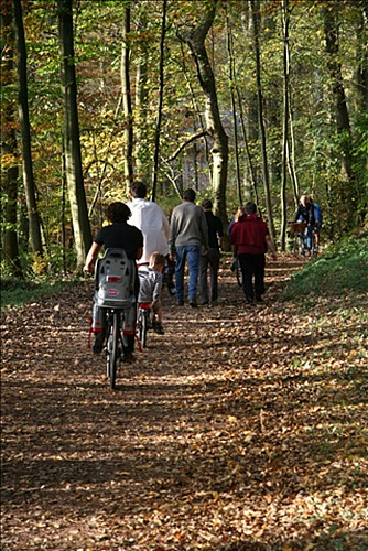 The RAVeL foot- and cycle path