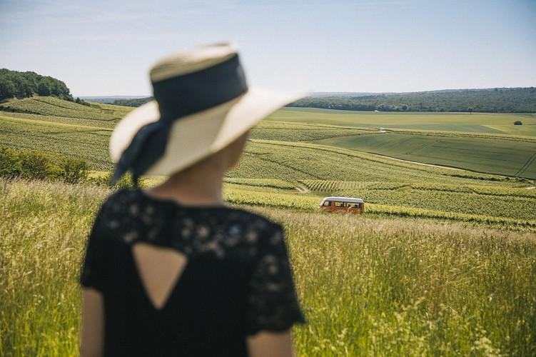 L'empreinte des fées, oenotourisme écocréatif en Champagne