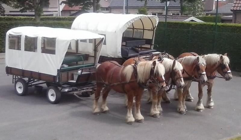 Balades en chariot couvert dans et autour