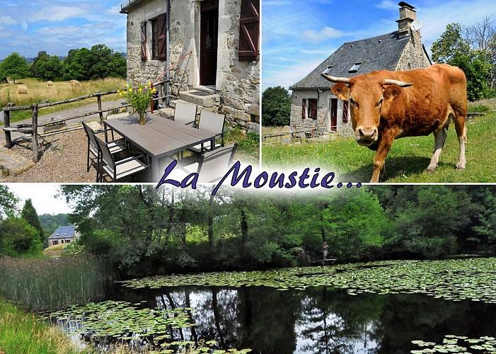 Location Gîtes de France La Moustie - Réf : 19G5319