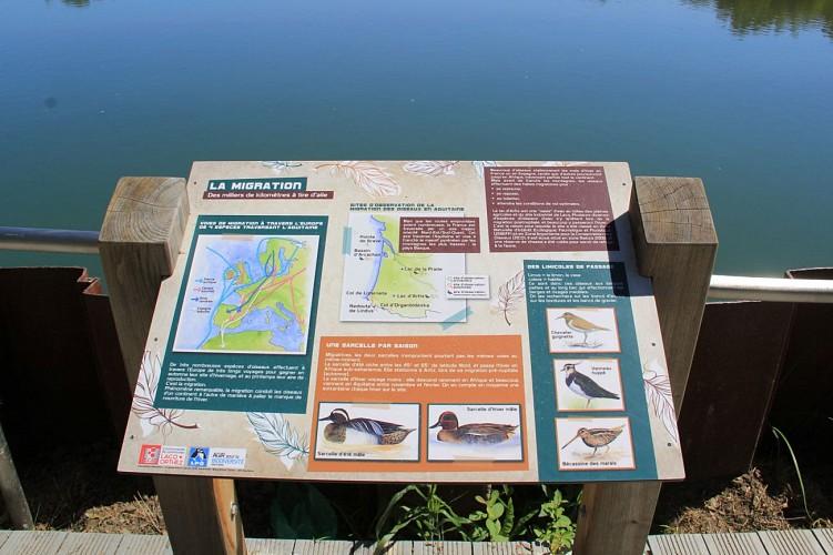 Lac d'Artix-Besingrand-Pardies