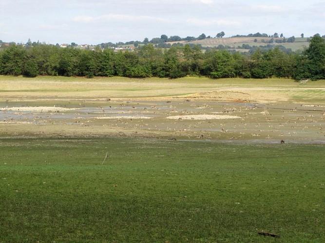 Lac d'Ayguelongue