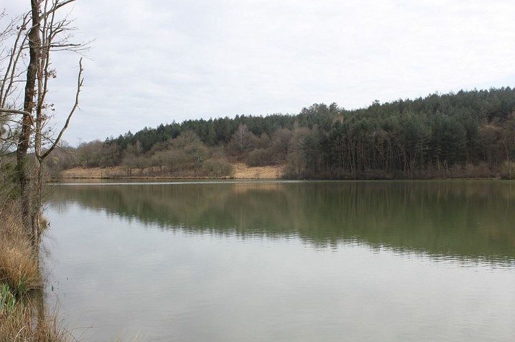 Lac de l'Aubin
