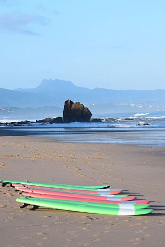 Alaia Surf Club