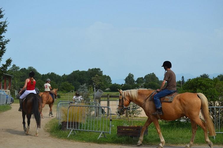 Centre Equestre de Goès