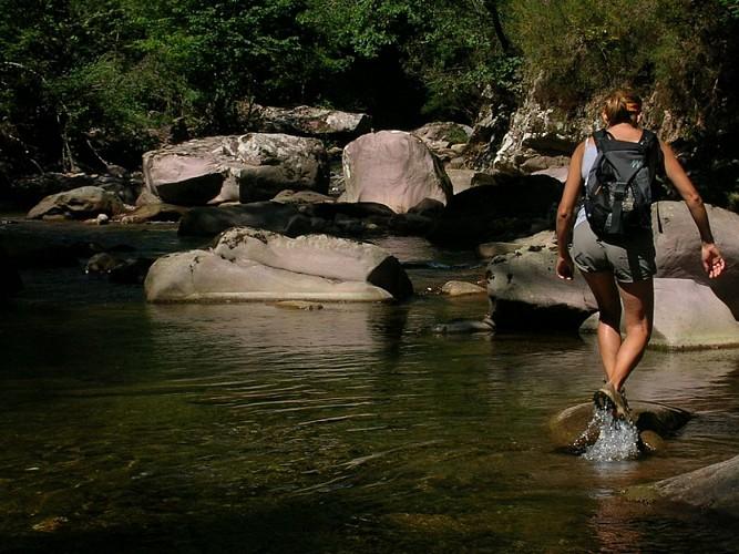 Yoga et randonnée au Pays Basque