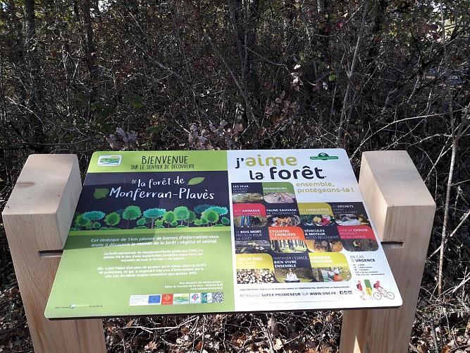 Départ du sentier de découverte de la forêt