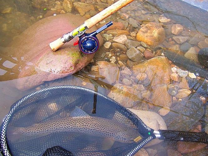 Benjamin Charron - Guide de pêche
