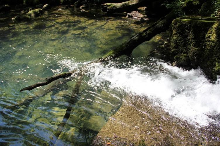 Fontaine-Noire