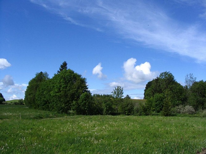 Le Plateau des Bornes