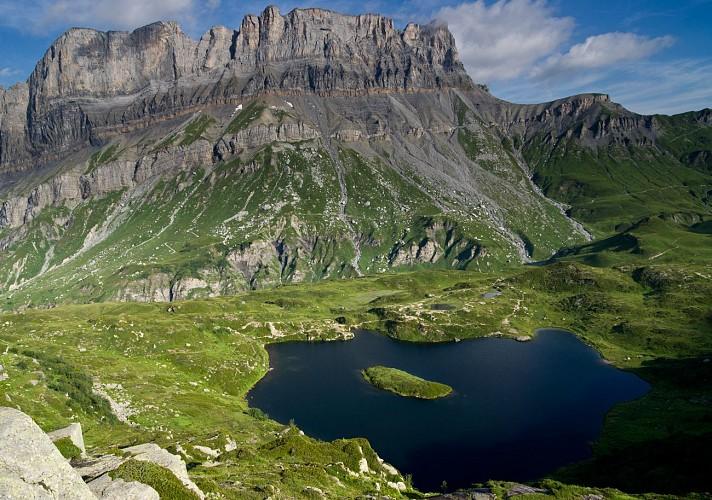 Passy Nature Reserve