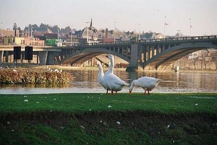 Le pont Roi Beaudouin
