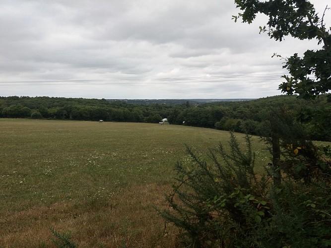 ©Vue panoramique bourgs de la Vilaine-Anne.V Office-de-Tourisme-du-pays-Redon (18)