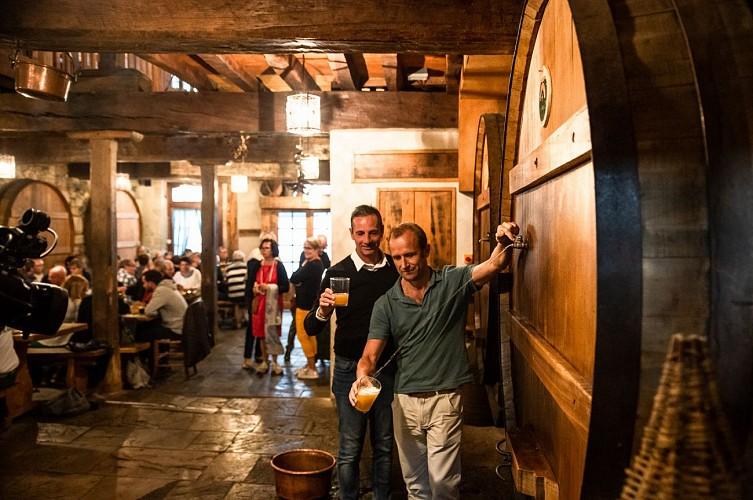 Ttipia