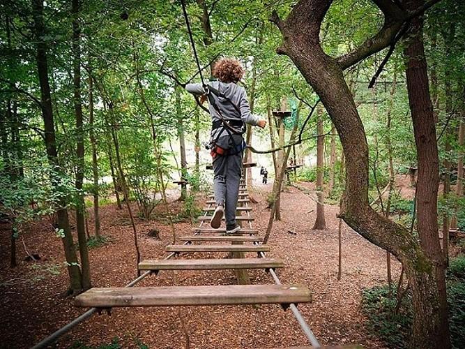 L'étape en forêt (accommodation)