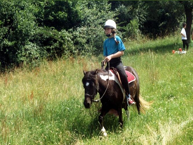 Mesnil d'Argences Equestrian Centre - Copie