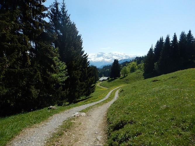 The Agy plateau