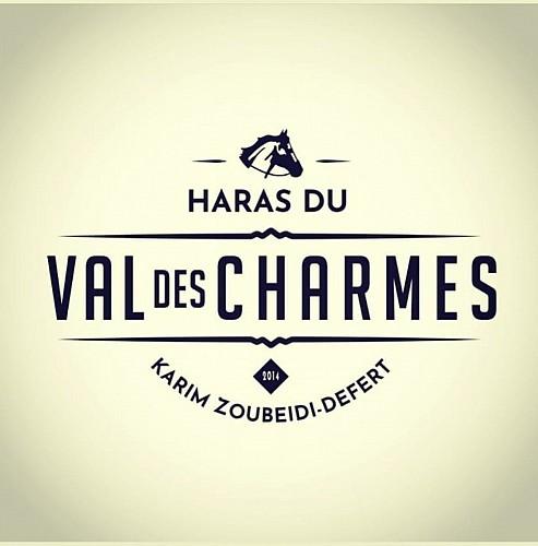 Haras du Val des Charmes - logo