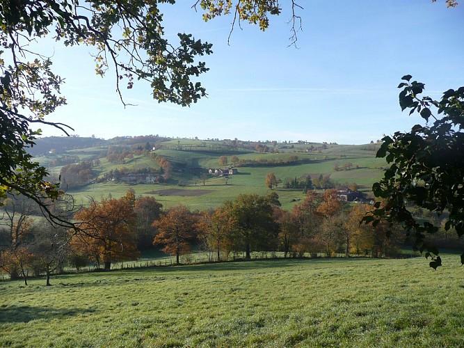 Sentier des paysages des Monts du Lyonnais : boucle ouest à VTT