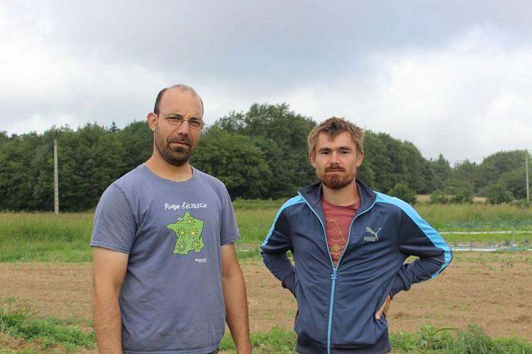 Pépinière-d'activités-agricoles---Cédric-Hamon-et-associé