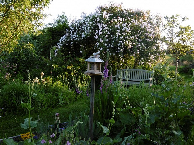 Jardin de Jane