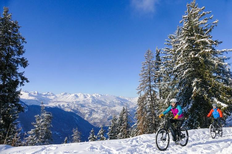 Fat Bike & E-Bike on snow