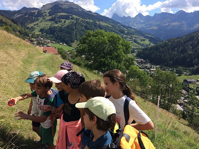 Mountain activity for children 4-7 yo: Let's find out bugs