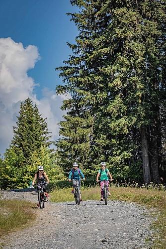Mountain bike elettriche - E-bike