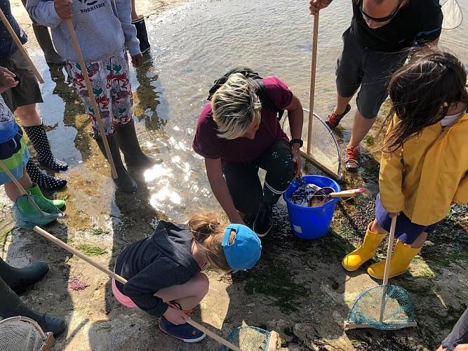 Balade découverte littorale - Wandelingen om de kust en de zee te ontdekken