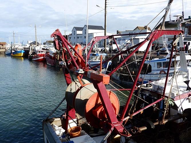 GROUPE Visite du port de Grandcamp-Maisy