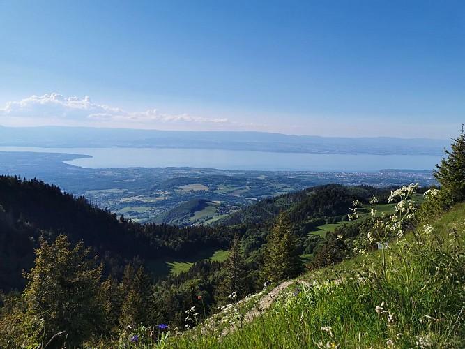 Le Mont Forchat