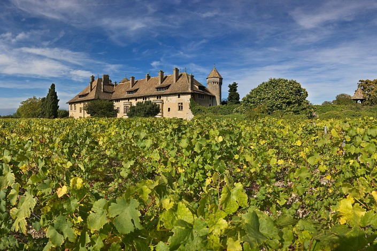 Domaine de Ripaille - Wein von Ripaille