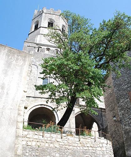 Saint Vincent kathedraal