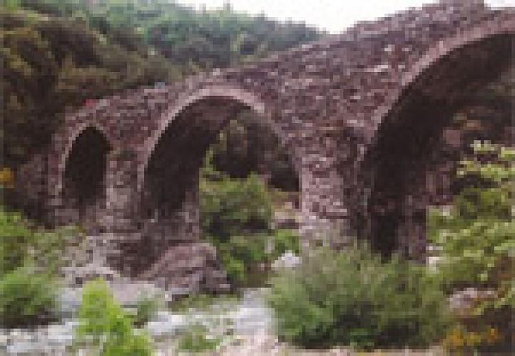 Pont de la Brousse