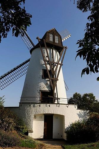 Le moulin Gustot