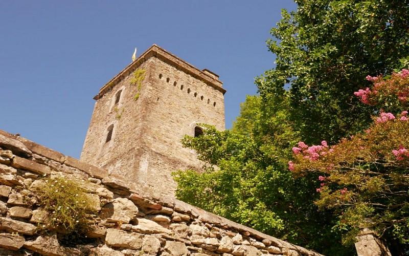 Le Château de Coarraze